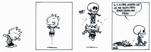 Bill Watterson, Calvin et Hobbes